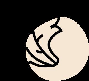 Icône kale